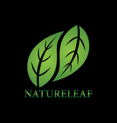 nature leaves logo vector image