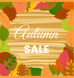autumn leaves on a wooden table autumn sale vector image