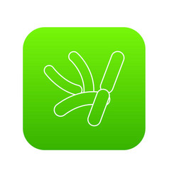 Bacilli icon green vector