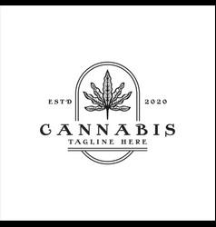 Cannabis vintage logo vector
