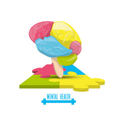 color brain with puzzle mental game vector image