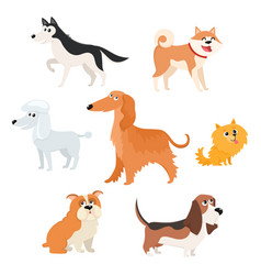 Cute dog characters of various breeds big vector