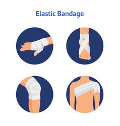 elastic medical bandage icon set body parts vector image