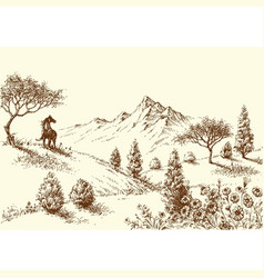 Landscape wilderness and horse drawing vector