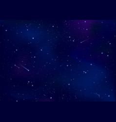 night starry sky vector image