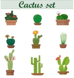 Realistic of Cactus set vector image