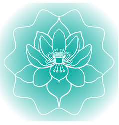 Schematic picture of flower lotus in blossom vector