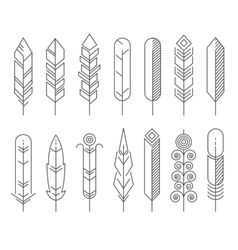 Hipster line feathers set vector image vector image