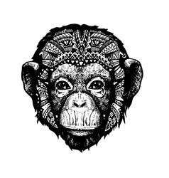 Monkey Head doodle style vector image