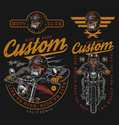 Colorful vintage motorcycle badges vector
