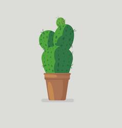 flat cute green cactus design cactus in pot vector image