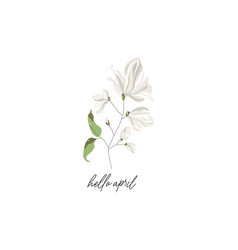 magnolia branch blossom flowers and calligraphic vector image