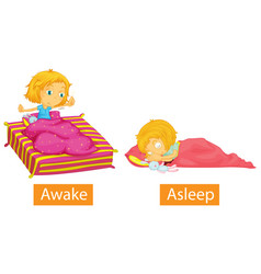 Opposite words with awake and asleep vector