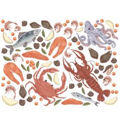 Raw fish salmon fillet octopus mussels gourmet vector