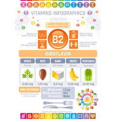 riboflavin vitamin b2 rich food icons healthy vector image
