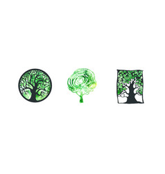 Tree logo watercolor collection vector