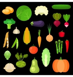 Selected healthful fresh vegetables flat icons vector image vector image