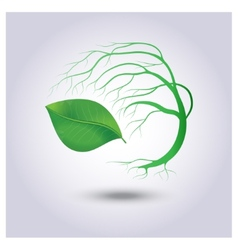 Tree with green leaves on a light gray background vector image