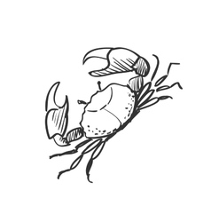 doodle crab vector image vector image
