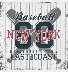 new york baseball sportswear emblem baseball vector image vector image