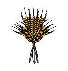 wheat ears icon image vector image