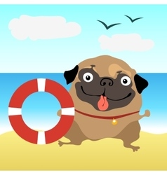 Dog pug at the beach vector