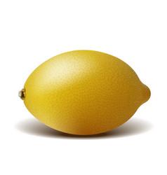 fresh ripe lemon isolated on white background vector image