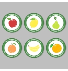 FruitySet3 vector image