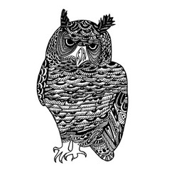 hand drawn sketch of owl bird vector image