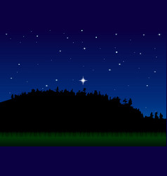 landscape forest meadow starry sky night vector image