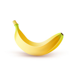 realistic banana on white background vector image
