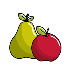 pear and apple fruit icon stock vector image
