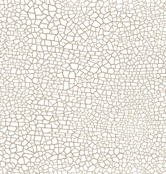 craquelure seamless pattern on a white background vector image