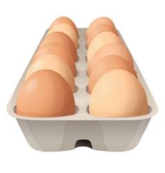eggs vector image