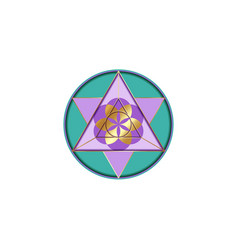 flower life metatron merkaba sacred geometry vector image