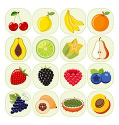 set of different kinds of fruit icons vector image
