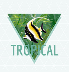 Tropical fish background summer design vector