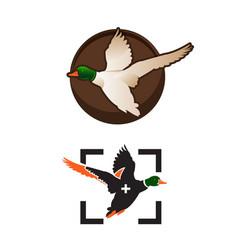 wild ducks fly duck hunting mallard duck flies vector image