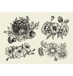 Flowers hand drawn sketch flower poppy vector