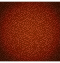 Brown leather texture vector image vector image
