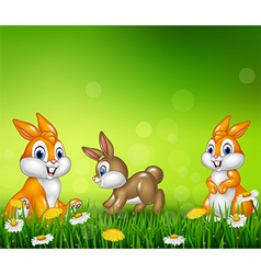 Cartoon happy little bunny on grass background vector