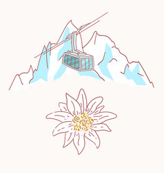 edelweiss mountains gondola flower symbol alpinism vector image
