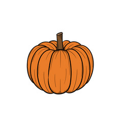 pumpkin handdrawn design template isolated vector image