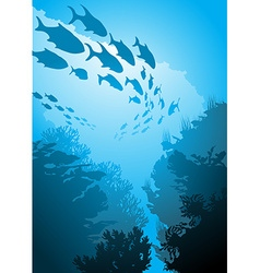 Underwater with fish vector
