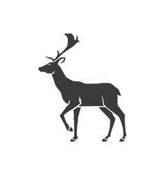 Deer Side View Isolated On White Background vector image