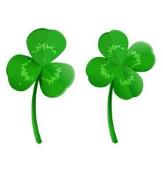 set green shamrock clover leaf with dew drops vector image vector image