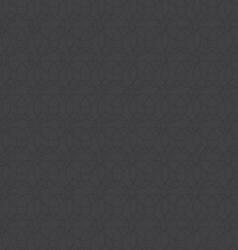 circle texture gray pattern vector image