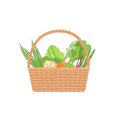 fresh organic vegetables in wicker basket isolated vector image
