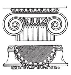 Graeco-ionic capital palmettes vintage engraving vector