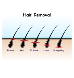 Hair removal colour vector image
